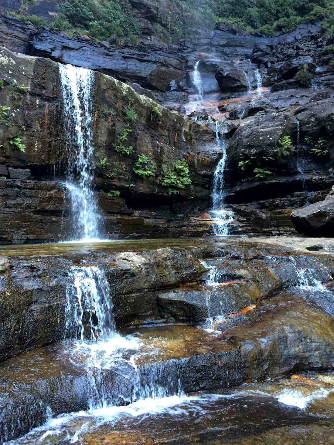 wentworth-falls-sydney-waterpool