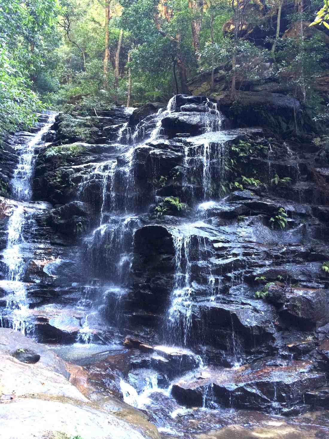 waterfalls-wentworth-falls-bushwalk