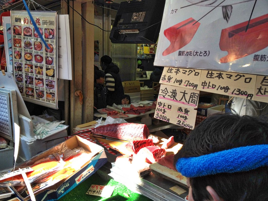 tsukiji-market-tuna-on-display